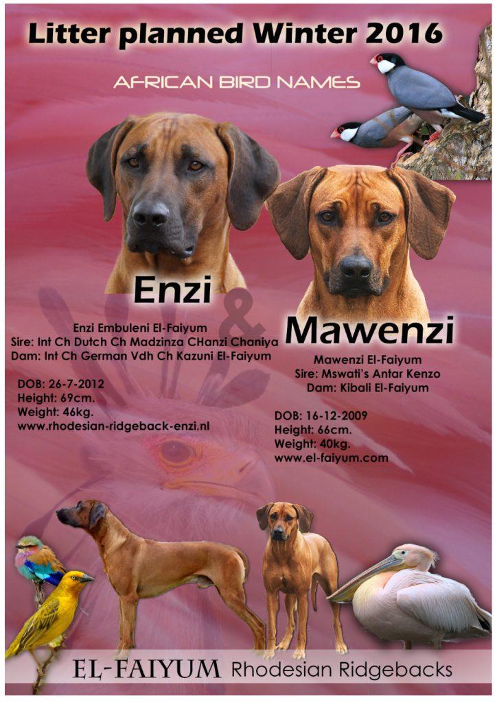 aankondiging_mawenzi1499023